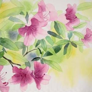 ツツジの花咲く五月を描く