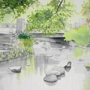 三島の柿田川風景を描く