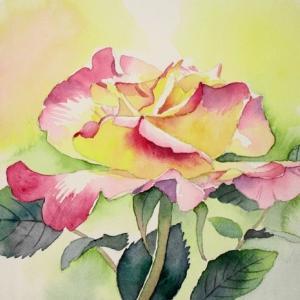 洋館に咲く薔薇を描く