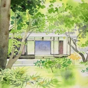 新緑の茶室風景を描く