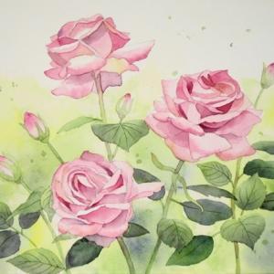 薔薇咲く五月が過ぎて^^