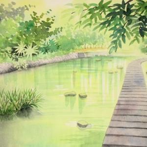 新緑の川の風景を描く