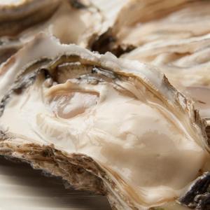6月、7月は、釧路の牡蠣にとって、一年で一番いい季節です