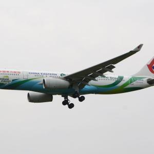 """なぜか、コイツだけなかなか来てくれない・・・苦笑(中国東方航空のエアバスA330-200""""緑地集団""""塗装機)"""