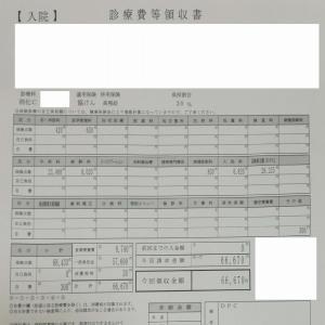 胆嚢を腹腔鏡手術で摘出(会計編)