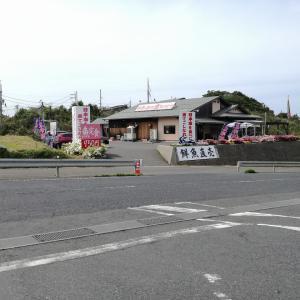 鳥取県東伯郡琴浦町 道の駅ポート赤碕隣にある[魚料理 海]で日本海の宝を食べてきました