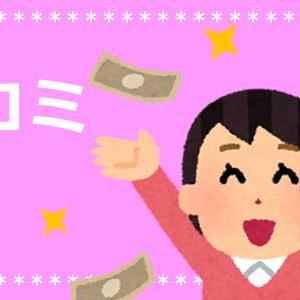 家計簿を1年つけることで貯金と積立に成功!旅行にいきます!