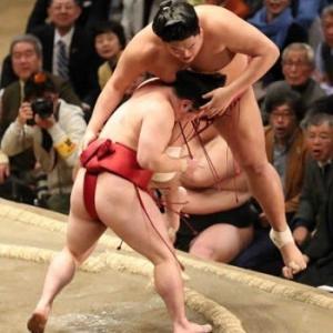 にわか相撲ファン