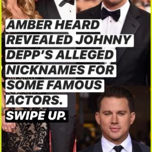 ジョニー・デップがジェラシーめらめらで、アンバーの共演俳優におかしなあだ名付けてた件!