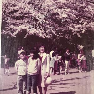 桜めぐり一人ラン☆40年振りの桜の名所