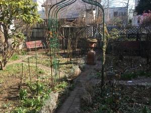 庭の記録2021・4月の庭から