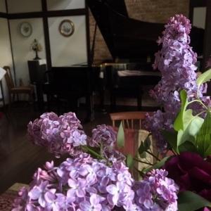 シューマン「美しき5月に」 歌曲をヴィオラで
