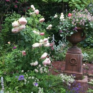 再開に向けての準備と夏の庭