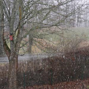 冬タイヤ外した途端に雪積もる