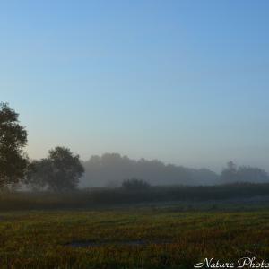 ●秋めく早朝景