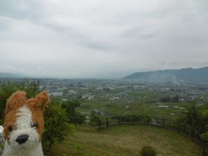 山梨県甲州市勝沼「ぶどうの丘」