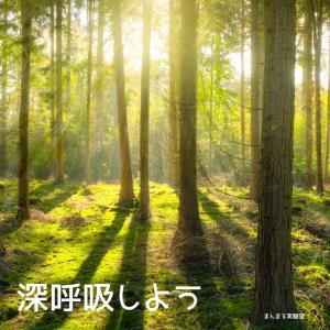 """【実験室感想】""""カルテ"""""""