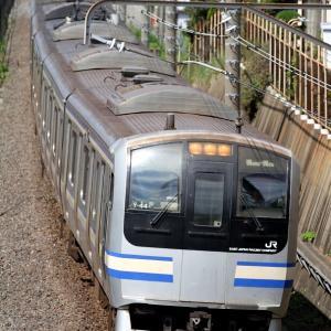 E217系 横クラY44編成 快速成田空港行き