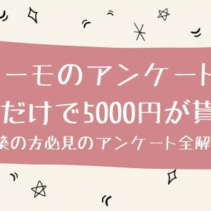 スーモのアンケートに答えるだけで5000円が貰えた!新築の方必見のアンケート全解説!