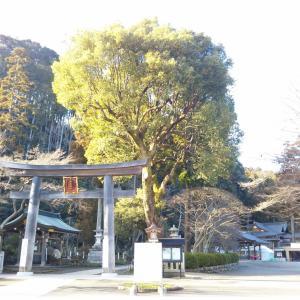 高麗神社へごあいさつ