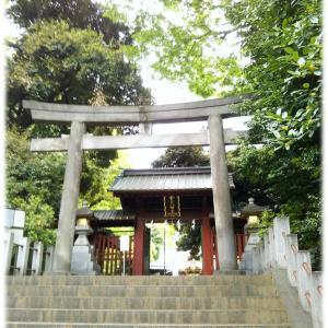 白い鏡の期間に神社の鏡