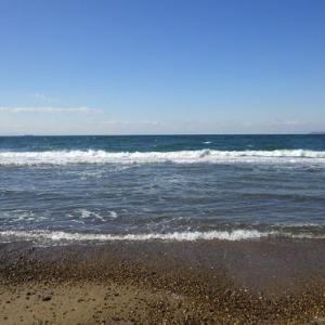 伊良湖 西の浜 カレイ