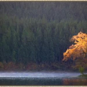 秋の水辺(フォトアート)