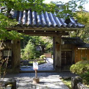 寺院左0681 宝泉院  血天井 五葉の松 袈裟懸け石