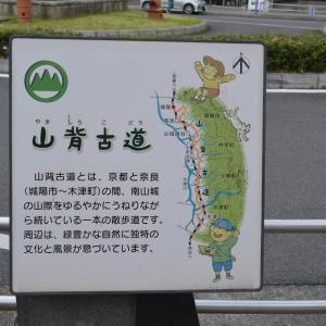 まち歩き城陽1110  JR城陽駅前 観光案内図