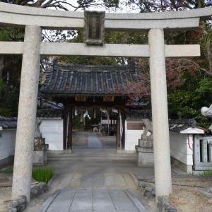 神社城陽0207 荒見神社 本殿・重要文化財