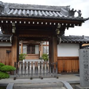 寺院向日0710 願成寺 西山浄土宗