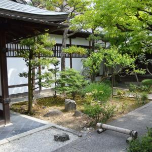 寺院右0616 妙心寺 雑華院(ざつげいん)