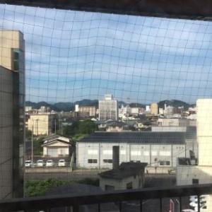 今日は鳥取から帰京
