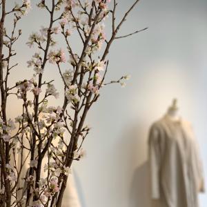 ピンク色で春を先取り。可愛い桜。