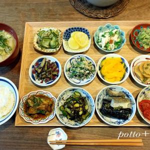 5月の精進豆皿膳