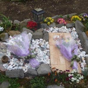 チヤーミーと東京から来た黒ちゃんのお墓参りに行って来ました。