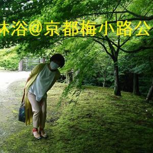 いのちの森で森林浴@京都梅小路公園