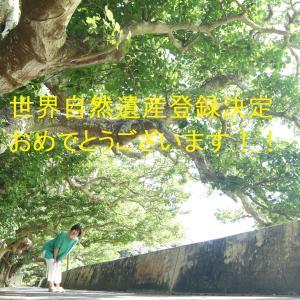 奄美大島、世界自然遺産登録!!