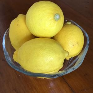 保存食作り始めました。①レモンシロップ&レモン塩