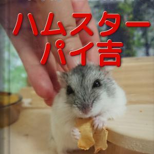 図鑑NEOメーカー