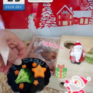 3代目パイ吉☆クリスマス2020