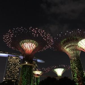 シンガポールのお気に入り。