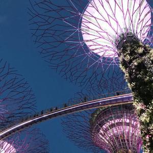 【SG】シンガポール王道の観光は1日で足りる
