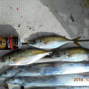2019年12月14日船釣り日記