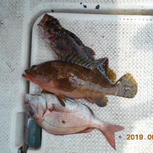 2019年06月09日船釣り日記