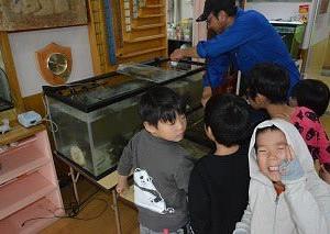 千代ノ浦海岸の生物展リニューアル