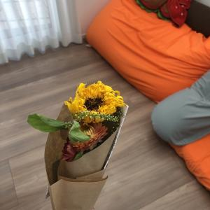 花のある生活(がっかり編)