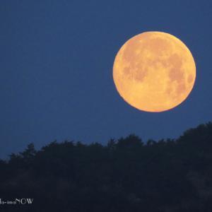 Super Moon と変形朝陽