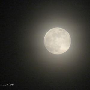 霞んでも...月と朝陽