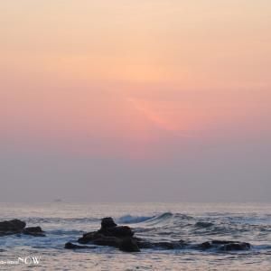 久々に朝陽と対面